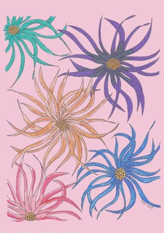 Colorié par Tite Lo